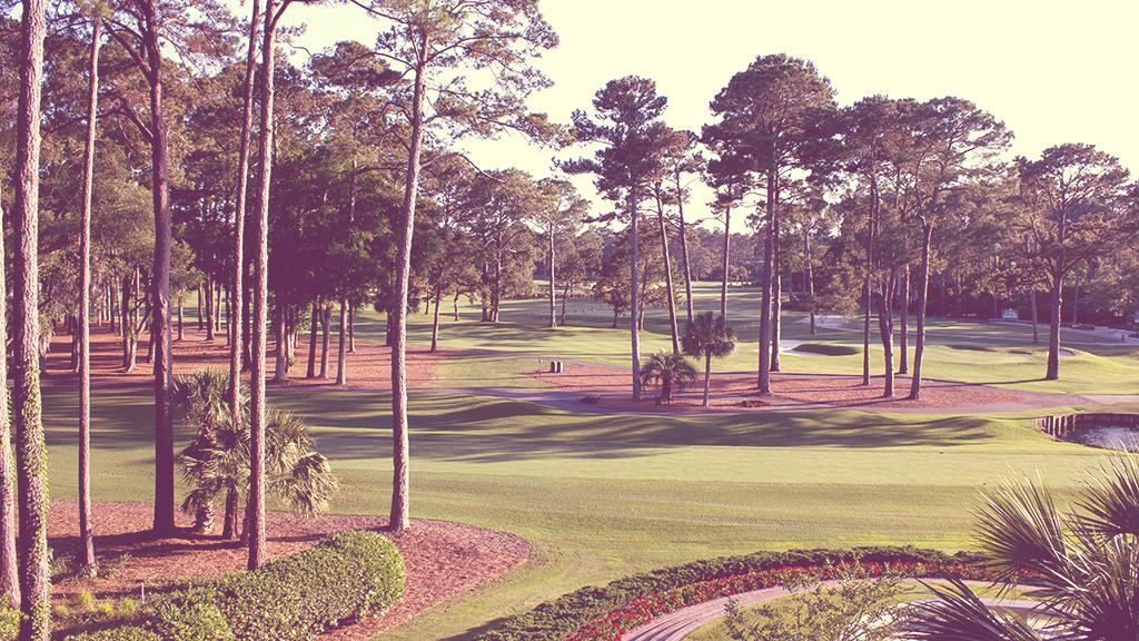Golf Industry Law